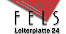 FELS Leiterplatte 24